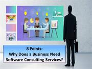 8 ideas to know why your business needs software consulting services
