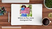 How to Pay Green Card Online