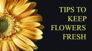 Tips to keep flowers fresh