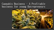 Cannabis Business – A Profitable business for young Entrepreneurs