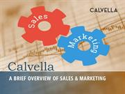 A Brief Overview of Sales & Marketing