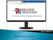 Best Web Development Company in Delhi | Brands Inovation