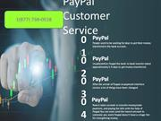 PayPal Customer Service Number 1(877) 738-0528
