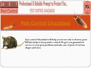 Best Pest Control Services In Ghaziabad