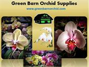 Orchid nursery Florida : Green Barn Orchid Supplies