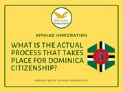 What is the actual process that takes place for Dominica citizenship_