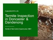 Termite Inspection Doncaster | Termite Inspection Dandenong