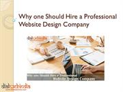 Why one Should Hire a Professional Website Design Company