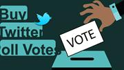 Why Create a Poll on Twitter
