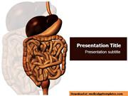 Digestive system Powerpoint ( PPT) Templ