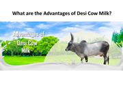 What are the Advantages of Desi Cow Milk? | GFO Farming