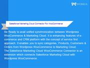 Salesforce Marketing Cloud Connector For WooCommerce