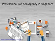 Professional Top Seo Agency in Singapore
