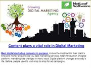 Content plays a vital role in Digital Marketing