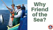 Why Friend of the Sea_