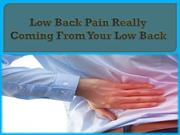 Low Back Pain Really Coming From Your Low Back