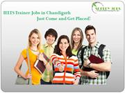Top Job Consultants in Chandigarh