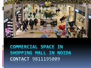 Commercial Space In Shopping Mall In Noida