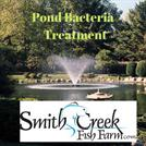 Beneficial Pond Bacteria Treatment-smithcreekfishfarm.com