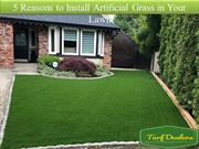 5 Reasons to Install Artificial Grass in Your Lawn
