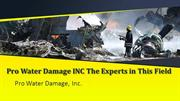 Pro Water Damage INC The Experts in This Field