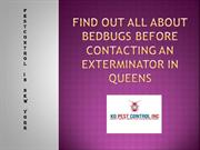 Find Out All About Bedbugs Before Contacting An Exterminator in Queens