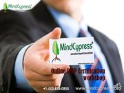 Online PMP Certification (Mindcypress) Course Project Management  Prof