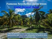 Famous Seychelles palm trees - Coral Strand Hotel