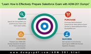Learn How to Effectively Prepare Salesforce Exam with ADM-201 Dumps