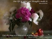 Our life our thoughts