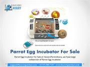 Parrot Egg Incubator for Sale to Growing Breeders of Birds