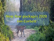 New Year party in Jim Corbett | New Year Packages 2020