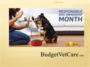 Responsible Dog Ownership Month | BudgetVetCare