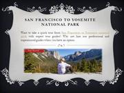 Sonoma Wine Tours from San Francisco