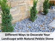 Different Ways to Decorate Your Landscape with Natural Pebble Stone