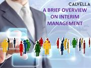 A BRIEF OVERVIEW ON INTERIM MANAGEMENT