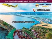 Best attractions not to miss out in Jeju Island South Korea