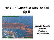 BP Gulf Coast Of Mexico Oil Spill