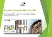 Organic Hemp Seed Oil - 100 % Organic Essential Oil at Best Price