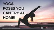 Puregemco Fitness _ Yoga Poses You Can Try At Home