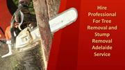 Hire Professional for Tree Removal Adelaide Service