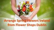 Spring Flowers Ireland from Flower Shops Dublin