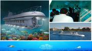 Sit Cozy in a Submarine & Watch Underwater Life in the Cayman Islands