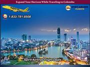 Expand Your Horizon While Traveling to Colombo
