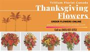 Thanksgiving Flowers By The Best Florist in Toronto