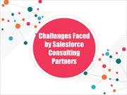 Challenges Faced by Salesforce Consulting Partners