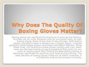 Why Does The Quality Of Boxing Gloves Matter?