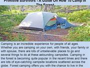Primitive Survivors - A Guide On How To Camp In The Forest