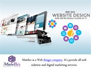 web design matebiz.in