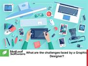 What are the challenges faced by a Graphic Designer